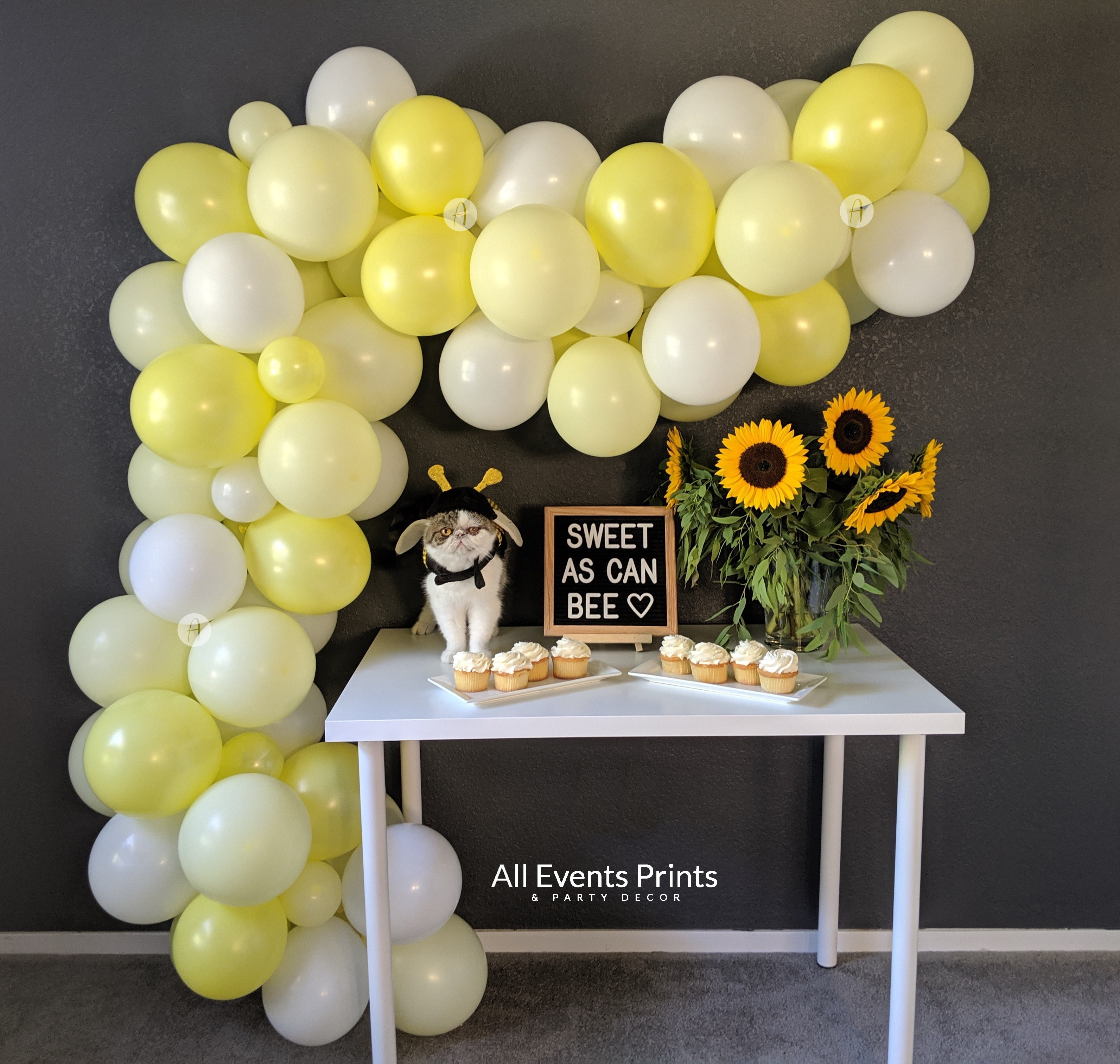 Sweet As Can Bee Balloon Garland Diy Kit 5 Ft 25 Ft Includes Everything That You Will Need For Assembly All Events Prints Party Decor